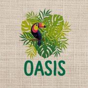 el-salvador-oasis-2
